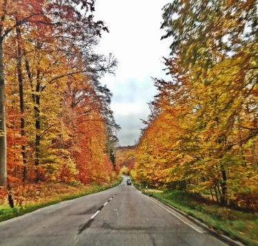 View leaving Neve's school...Loving Fall.